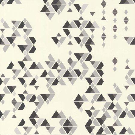 SMART GRIS NOIR – 11152419
