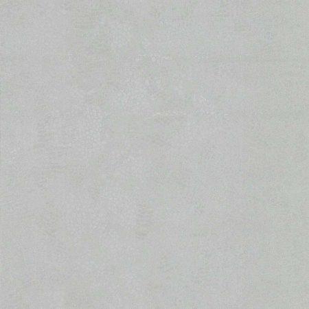 PEAU SERPENT ARGENT – 12113219