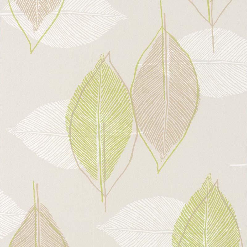 Papier Peint Feuille Graphique Vert Beige 51143304 De La