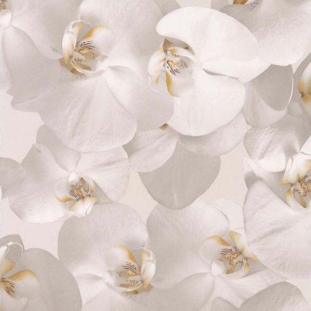ORCHIDEES COEUR JAUNE – 51152102