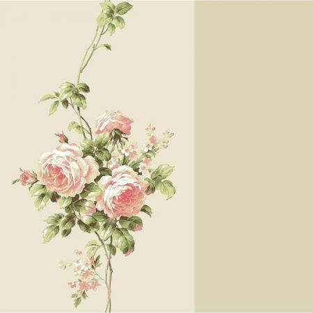 ROSE RAYURE ROSE – BA4568