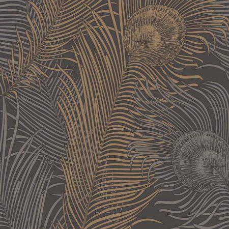 PAON BLACK/GOLD – EM17062