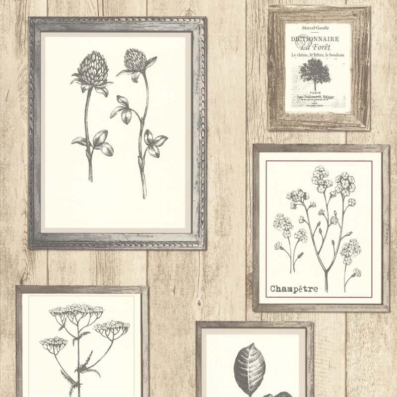 papier peint cadre botanique beige 11161507 de la collection papier peint garden party. Black Bedroom Furniture Sets. Home Design Ideas