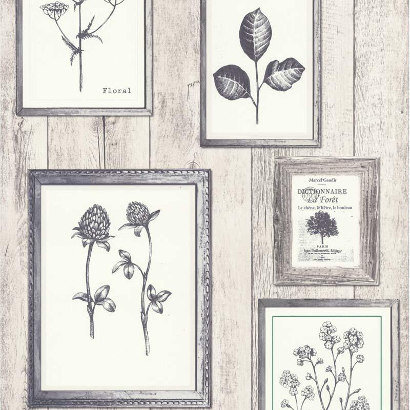 papier peint cadre botanique gris 11161509 de la collection papier peint garden party lut ce. Black Bedroom Furniture Sets. Home Design Ideas