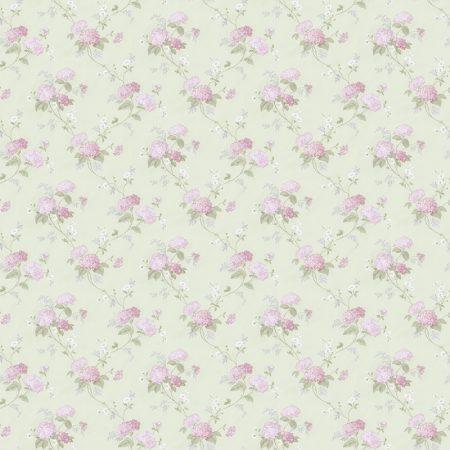 HORTENSIA VERT/ROSE – PR33860