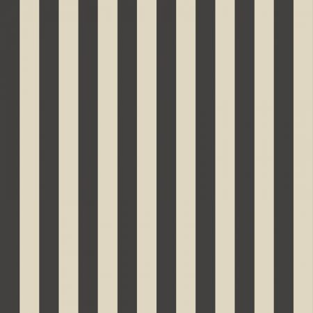 RAYURE BICOLORE NOIR/BEIGE – SY33911