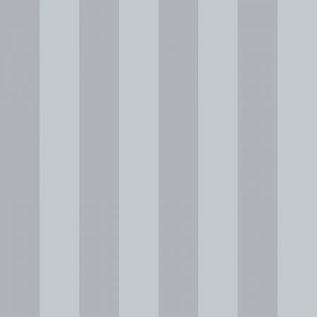 RAYURE LARGE GRIS – SY33914