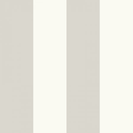 RAYURE XL GRIS PALE – SY33938