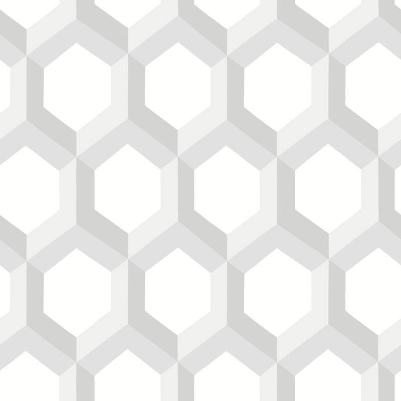 HEX GRIS – FD23840
