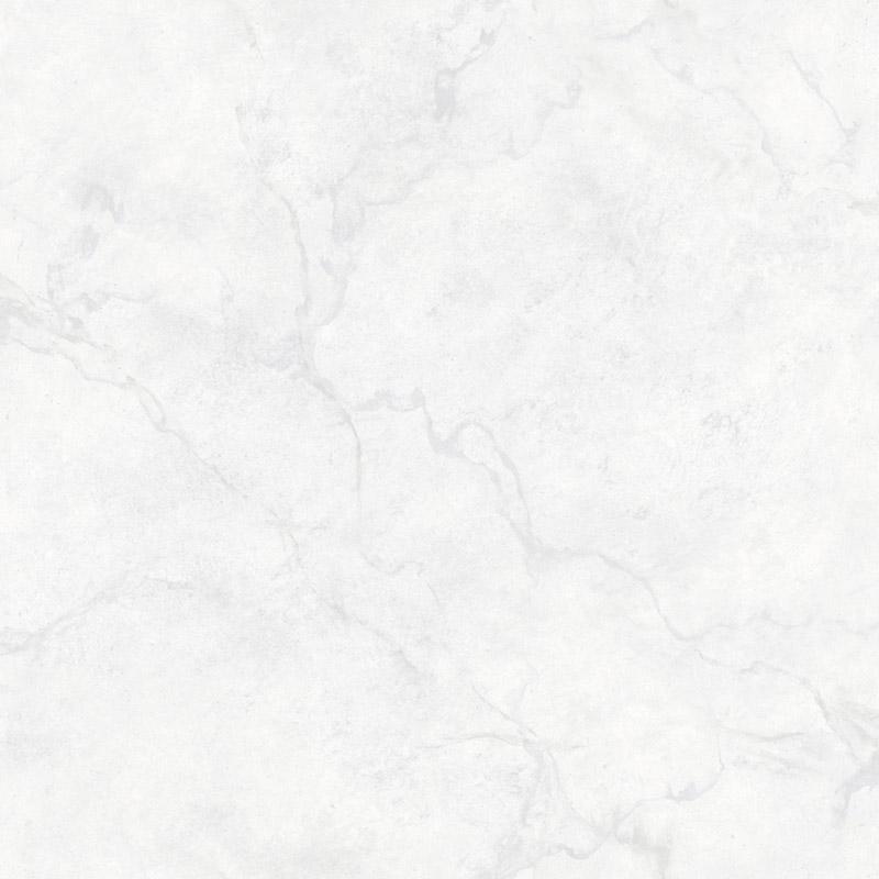 INUENDO GRIS CLAIR – FD23870