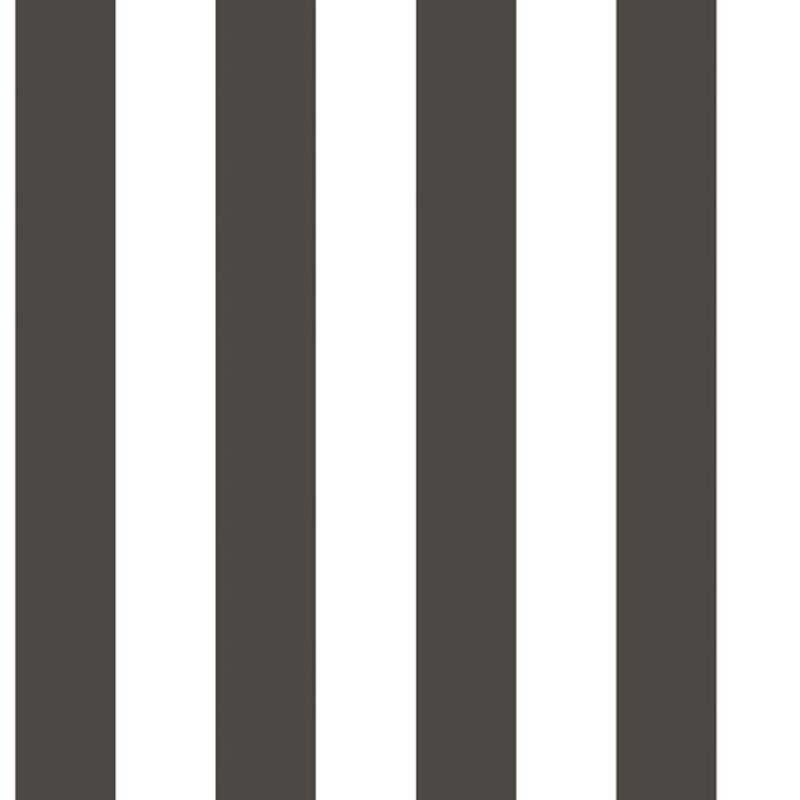 RAYURE NOIR/BLANC – G67521
