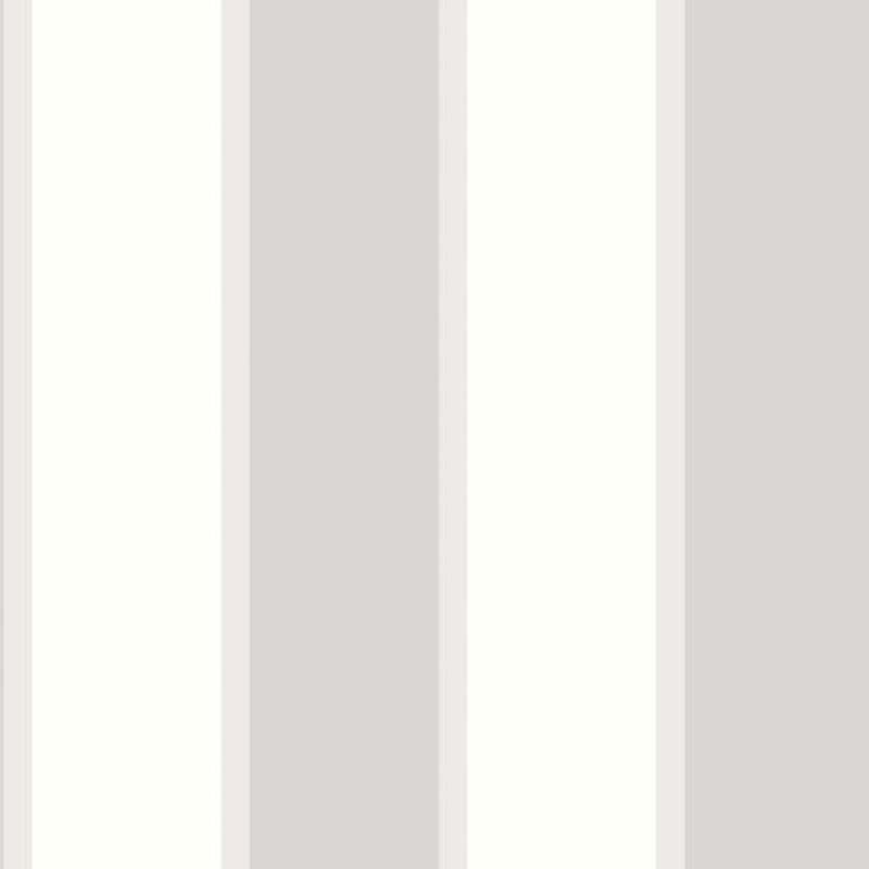 RAYURE GRIS/BLANC – G67549