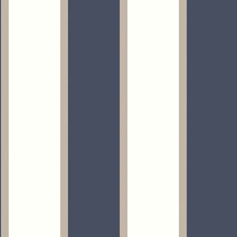 RAYURE  BLEU/BLANC – G67550