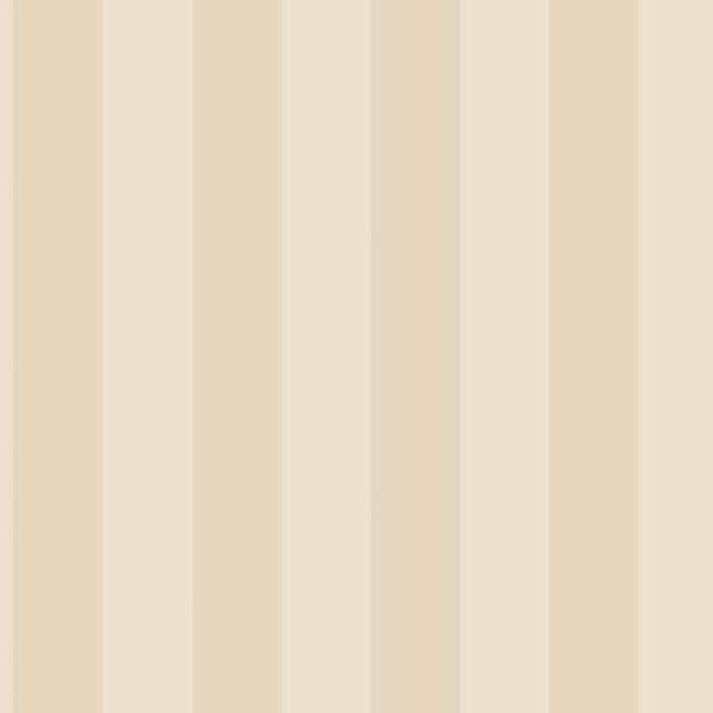 RAYURE SABLE – G67555