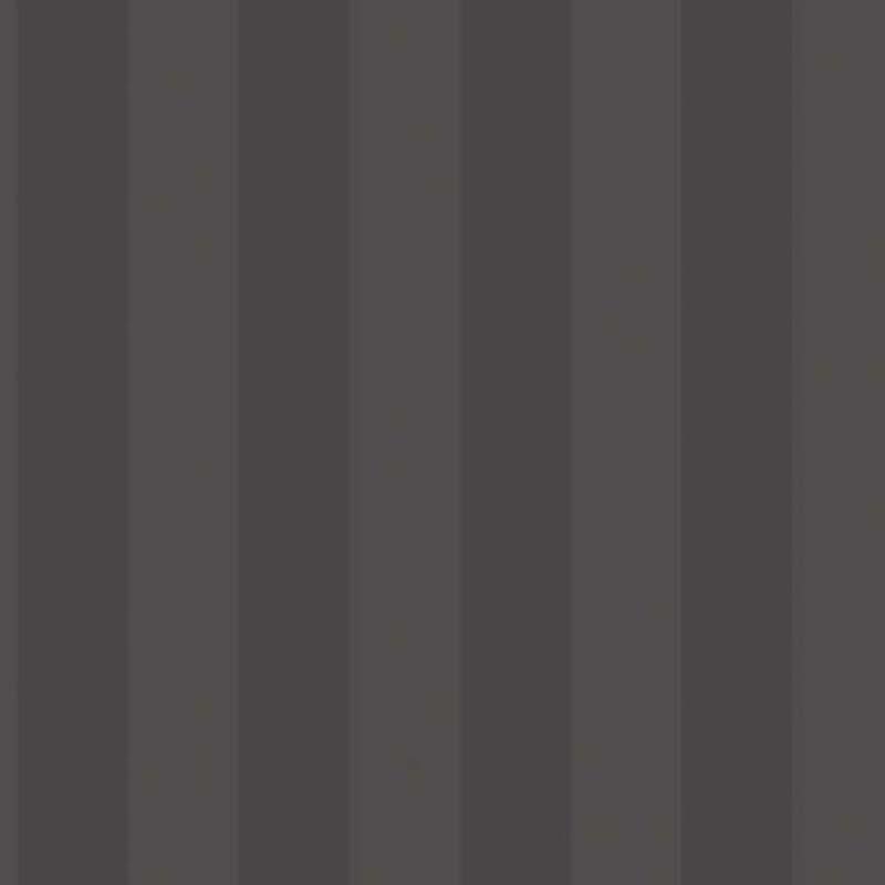 RAYURE NOIRE – G67556