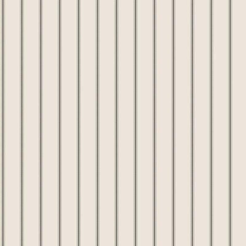 RAYURE NOIR/ARGENT – G67562