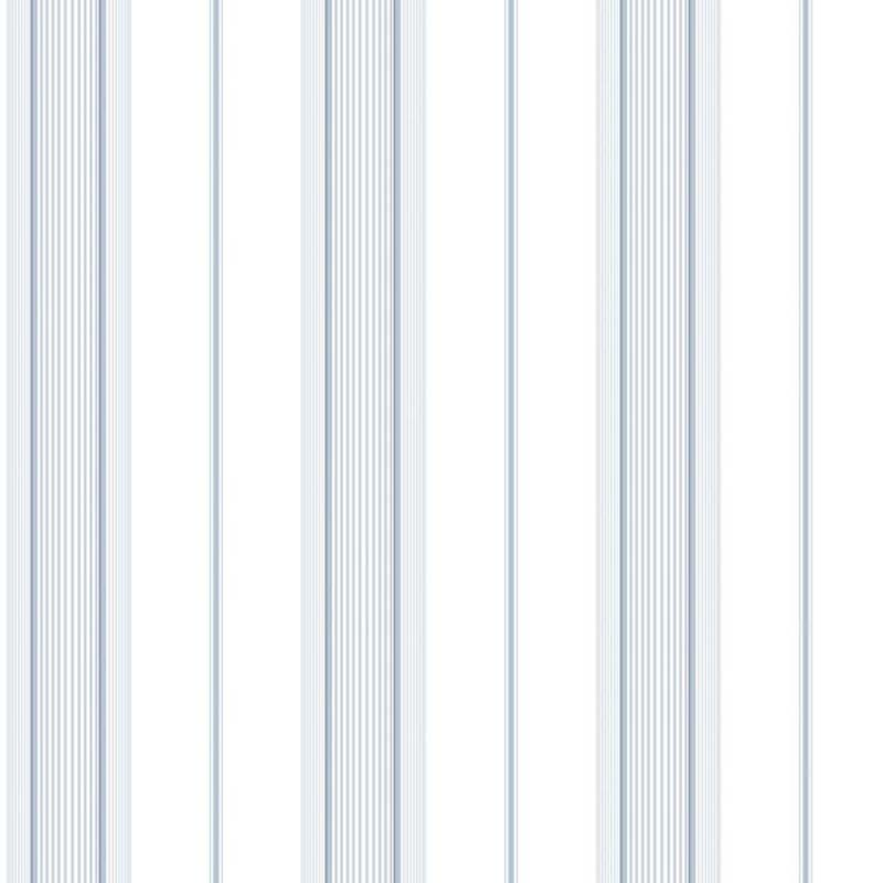 RAYURE BLEU – G67574