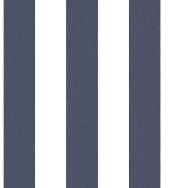 RAYURE NAVY/BLANC – G67584