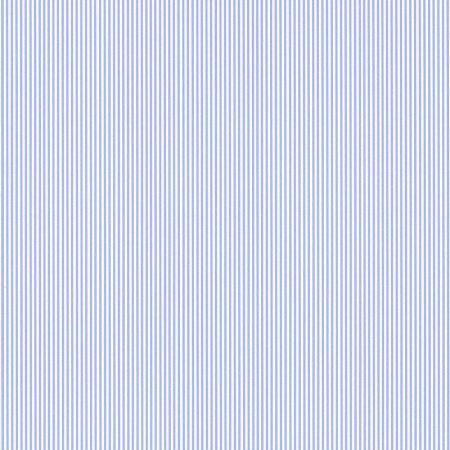 RAYURE FINE BLEUE – 11092001