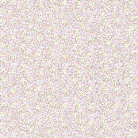 PETITE BRUME – 36170603
