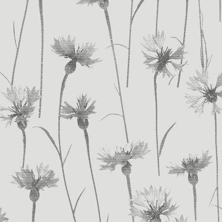BLEUET GRIS – FD24616