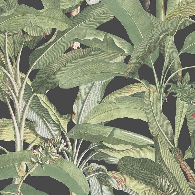 Papier Peint Feuillage Vert Fond Noir Mh36535 De La Collection
