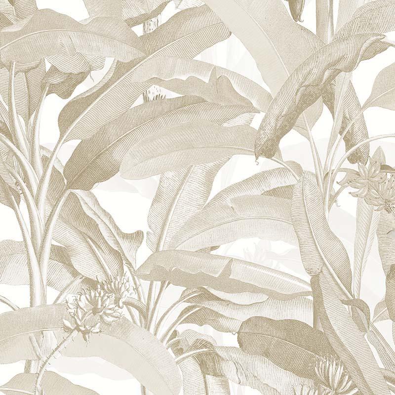 Papier Peint Feuillage Beige Mh36536 De La Collection Papier Peint
