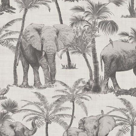 ELEPHANT GREGE – 62610702