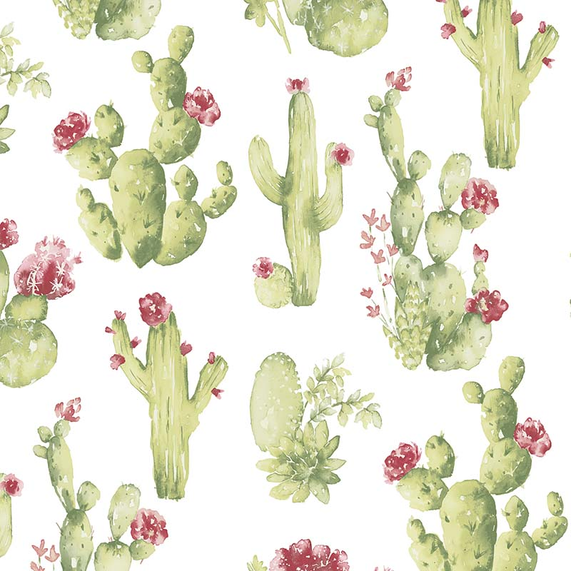 Papier Peint Cactus Fleur Rouge Ck36630 De La Collection Papier