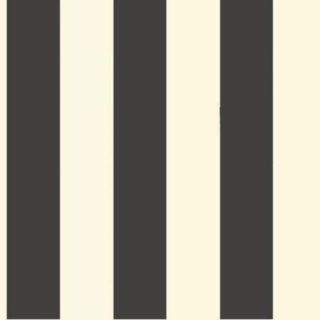 RAYURE NOIR ET BLANC – ST5691