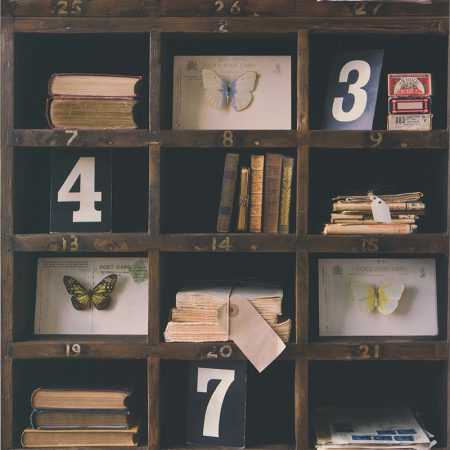 BIBLIOTHEQUE CURIEUSE – 51152008