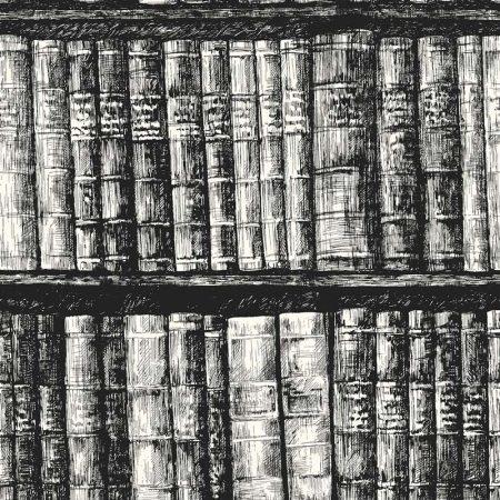 BIBLIOTHEQUE NOIR BLEU CLAIR – HO3316
