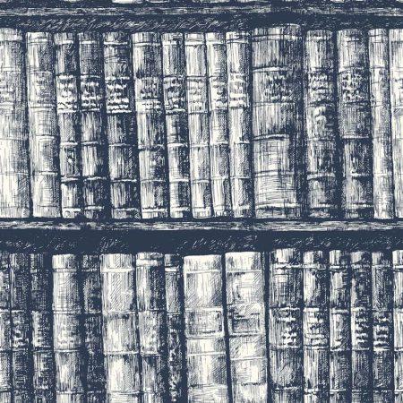 BIBLIOTHEQUE BLEU – HO3317