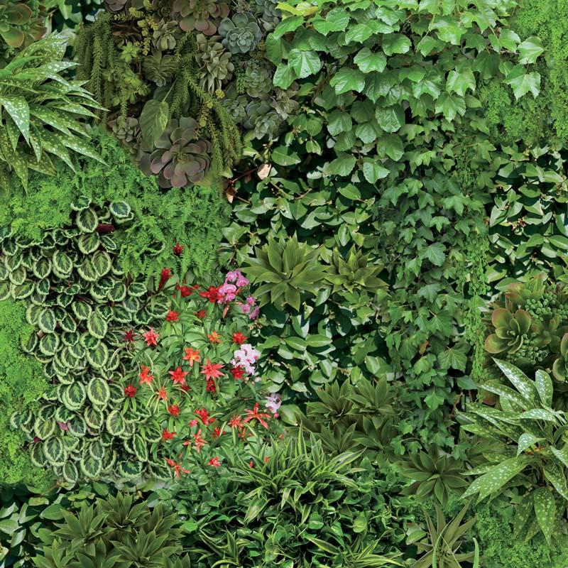 papier peint mur vegetal on1670 de la collection papier. Black Bedroom Furniture Sets. Home Design Ideas