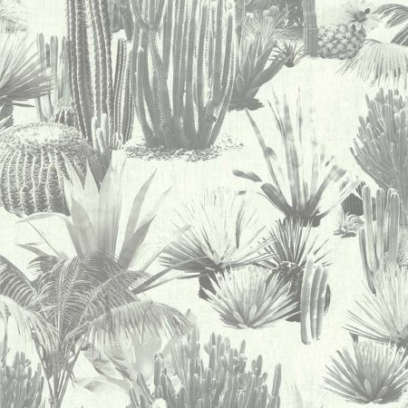 DESERT MEXICAIN NOIR ET BLANC – 51171209A