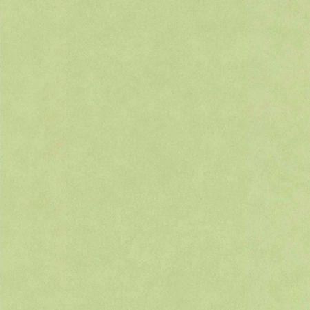 UNI FIBRE PAILLETTE ANIS – 51163904B