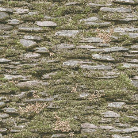 PIERRE MOUSSE VERTE – 7336