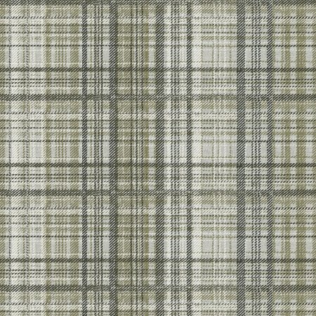 TWEED ECOSSAIS TAUPE – 24266