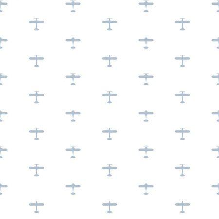 AVION BLEU CIEL – 5421