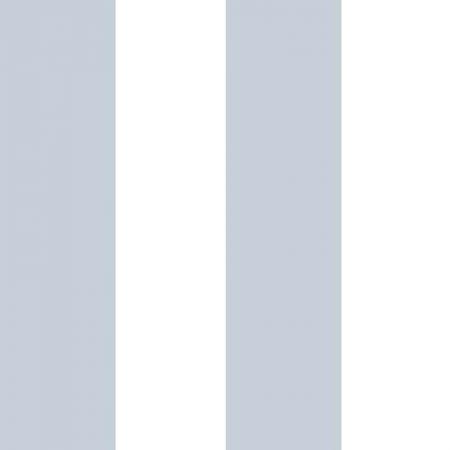 LARGE RAYURE BLEU ET BLANC – 5473