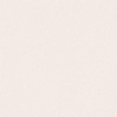 ARGILE ROSE PÂLE – 62902506