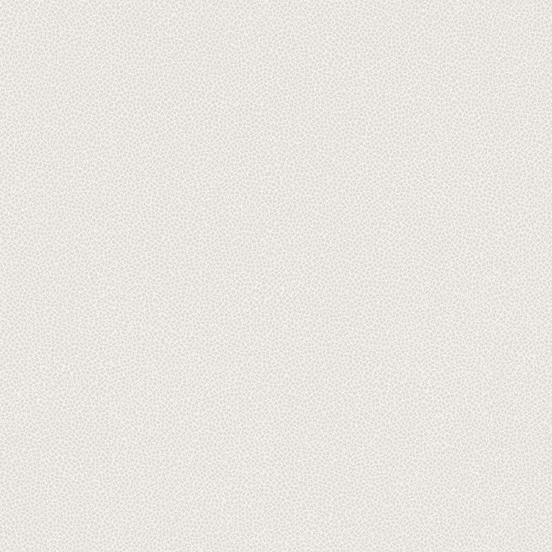 ARGILE NUDE – 62902507