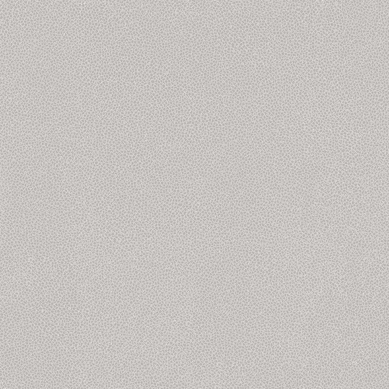 ARGILE GRIS – 62902508