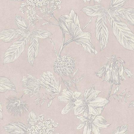 PLANTE ROSE – 62902700