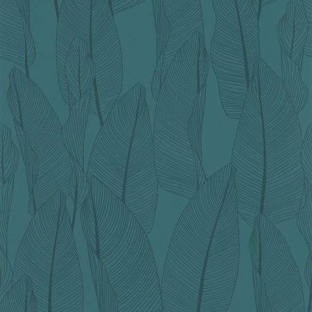 BANANIER BLEU – 51184701