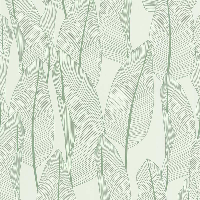 Papier Peint Bananier Vert Fond Blanc 51184714 De La Collection Papier Peint Fragrance Lutece Papier Peint