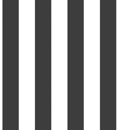 RAYURE NOIR ET BLANC – 5665A