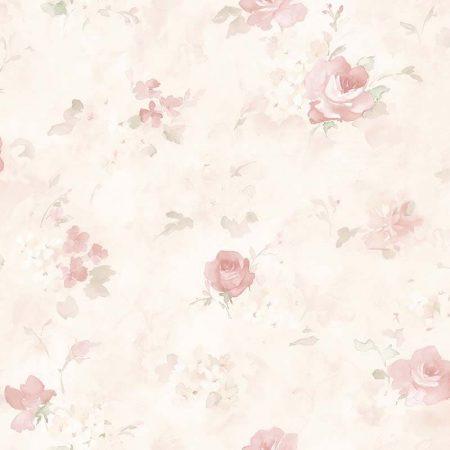 ROSE AQUARELLE ROSE ET CRÈME – AB27661