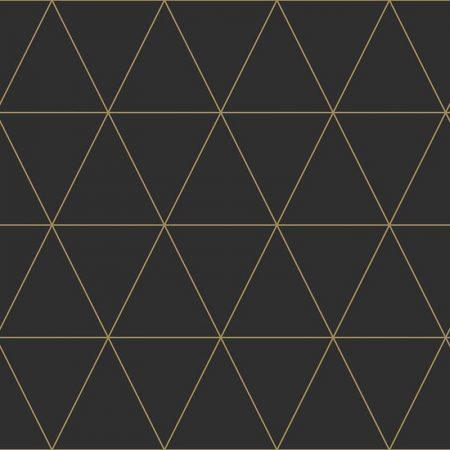 TRIANGLE GRAPHIQUE NOIR – 347684