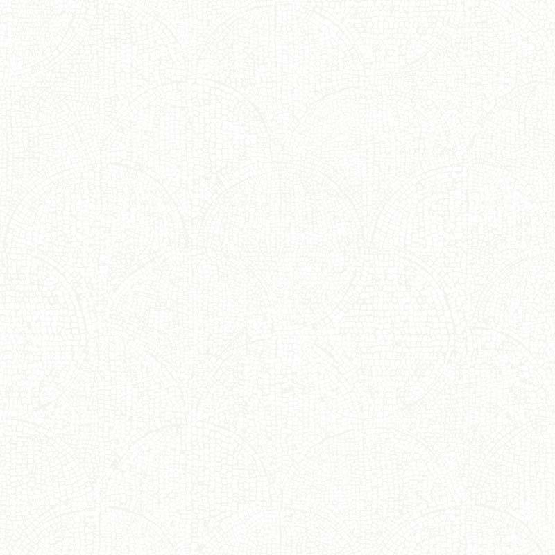 ÉCAILLE GRIS CLAIR – 51195209A